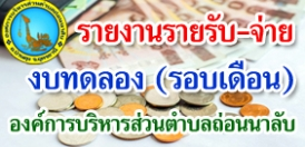 รายงานงบการเงิน ประจำเดือน กุมภาพันธ์ 2564 ประจำปีงบประมาณ 2564